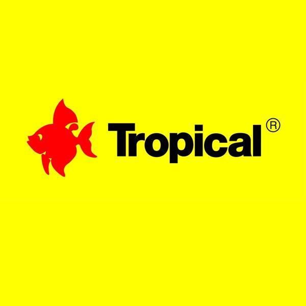 Tropical (Acuario de Lujo)