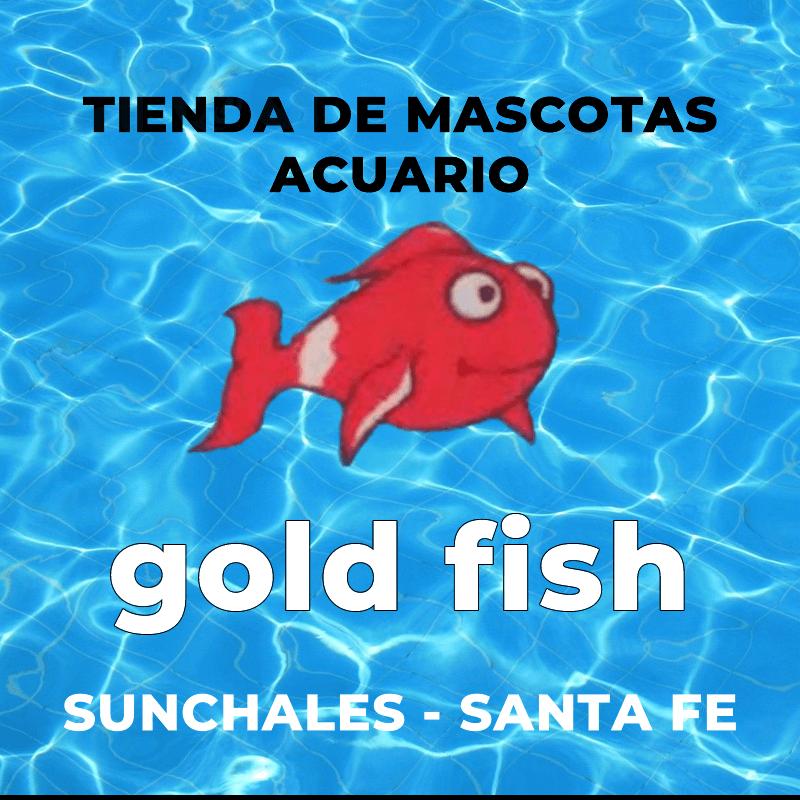 Acuario GoldFish