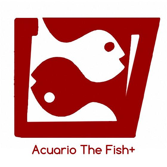 Acuario The Fish+