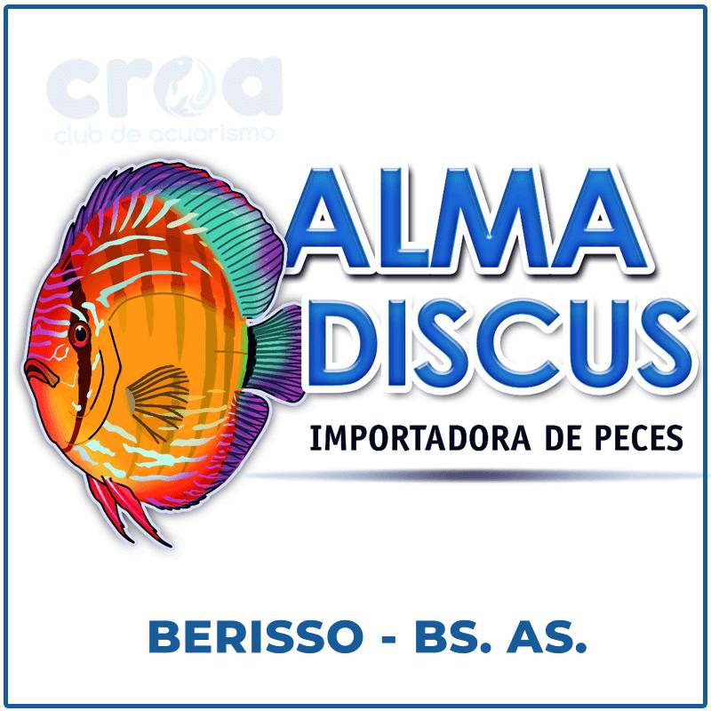 Alma Discus Importadora de Peces