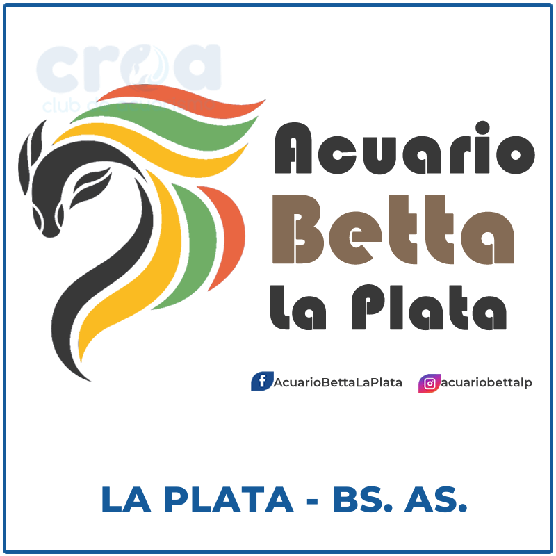 Acuario Betta La Plata
