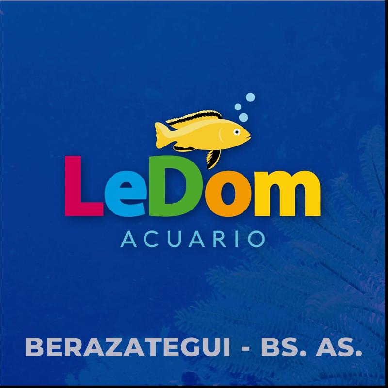 Acuario LeDom