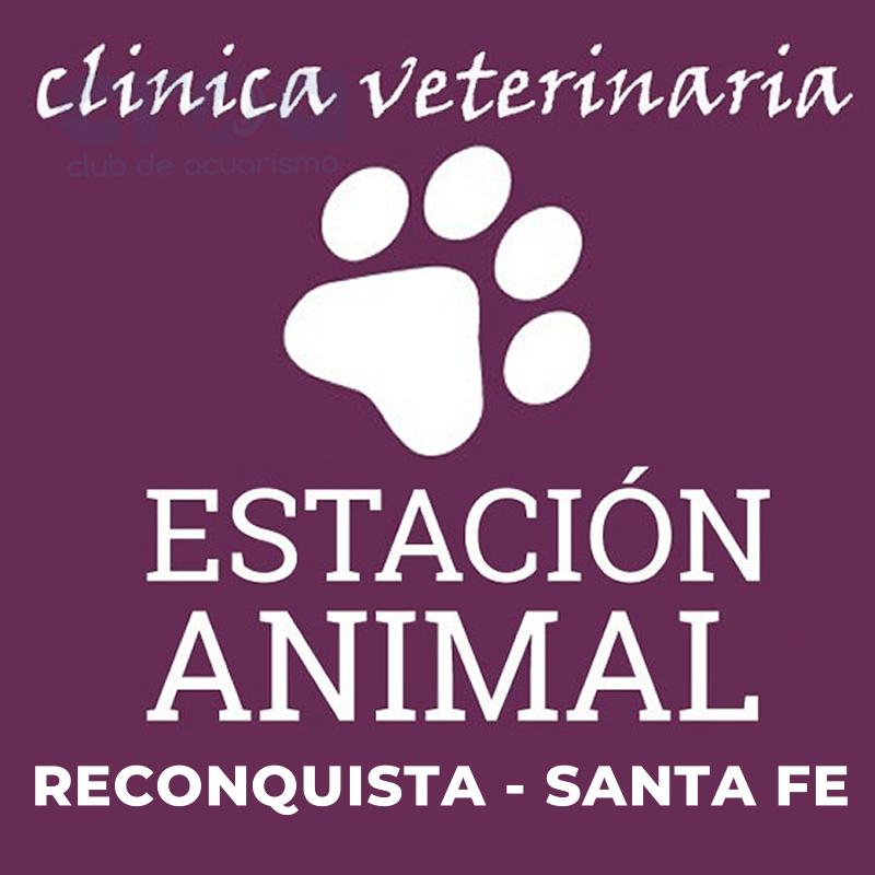 CLINICA VETERINARIA ESTACION ANIMAL