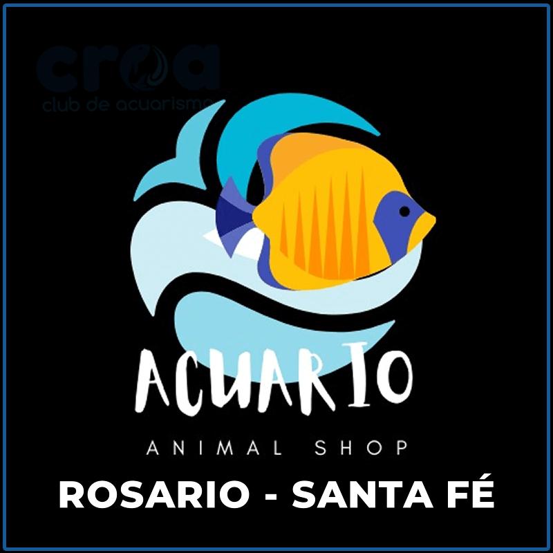 Acuario Animal Shop