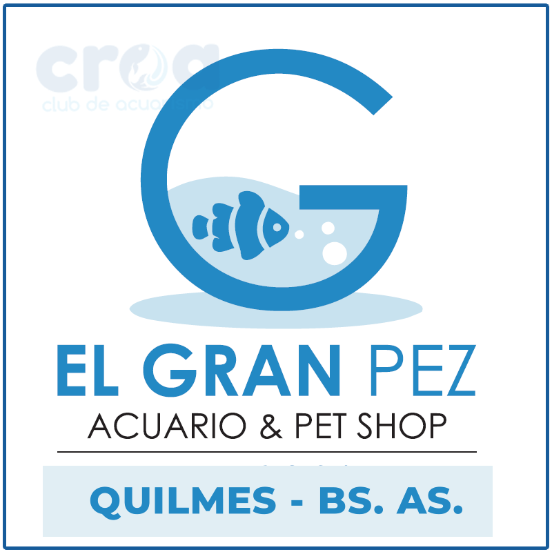 El gran pez – Acuario & Pet Shop